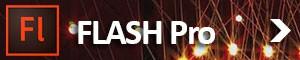 flash_demo